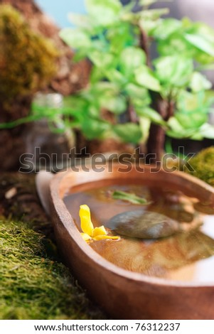 Natural outdoor spa setting with bonsai tree - stock photo
