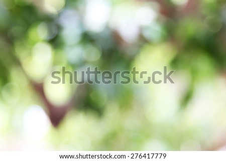Natural outdoors bokeh background in green and yellow tones bright, beautiful - stock photo