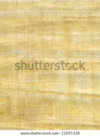 Natural papyrus background and texture - stock photo