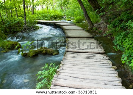 Natural Park - stock photo