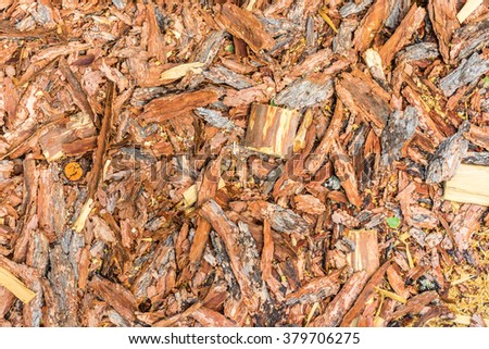 Natural pine bark used as a soil covering (compost) for mulch in the garden, wood chip abstract background texture - stock photo