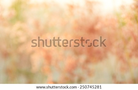 Natural pink blured background with bokeh - stock photo