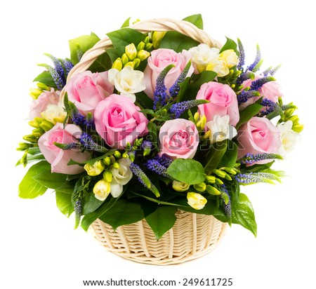 Natural pink roses in a basket isolated on white background - stock photo