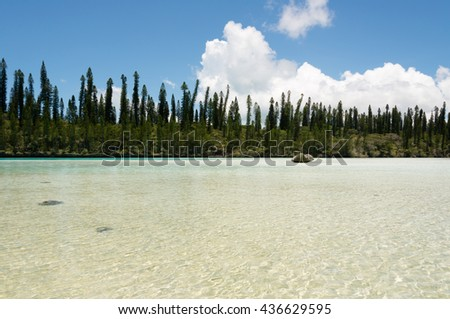 Natural Pool on the Isle of Pines in New Caledonia. The cove is surrounded by pacific cedars and is known as one of the most famous snorkeling points in the world. - stock photo