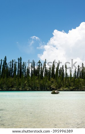 Natural Pool on the Isle on Pines in New Caledonia. The cove is known as one of the most famous snorkeling points in the world. - stock photo