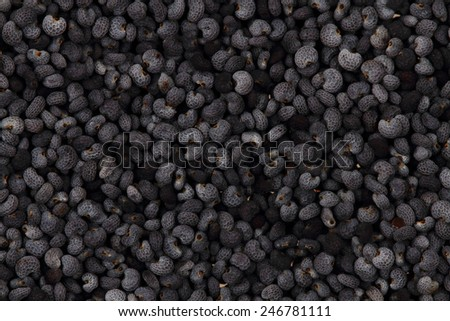 natural poppy seeds background - stock photo