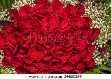 Natural red roses background. Border of Red roses bouquet.