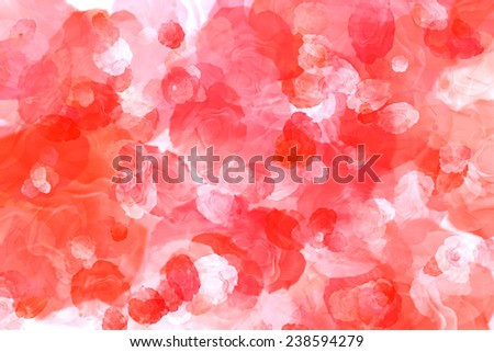 Natural red roses on the best background - stock photo
