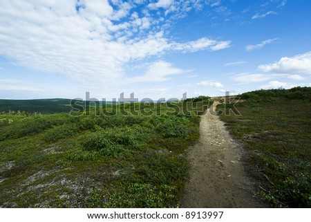 Natural reserve landscape from north of finland - stock photo
