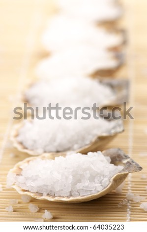 Natural salt of Dead Sea in seashells on beige mat.
