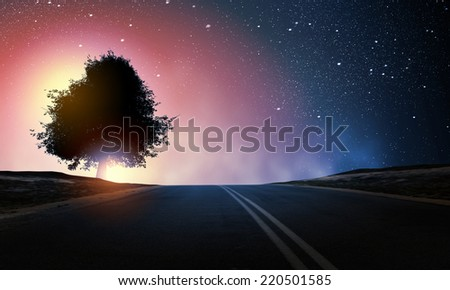 Natural scene with silhouette of tree against sunset light - stock photo