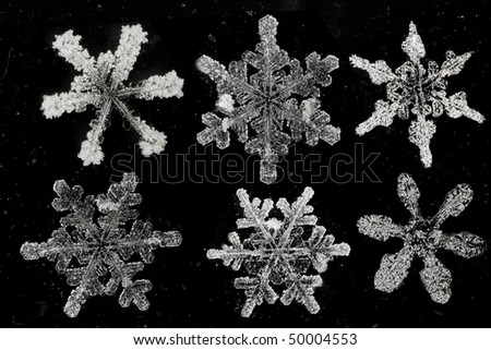 natural snow flakes on abstract background - stock photo