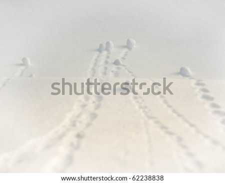 natural snowballs  in a slope