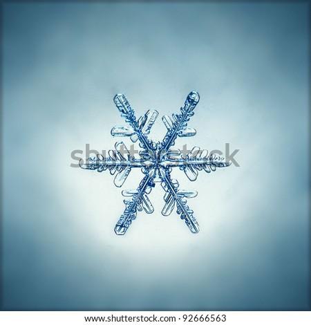 natural snowflake macro - stock photo