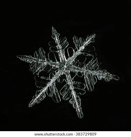 natural snowflakes in color light photo real snowflakes during a snowfall, under natural conditions at low temperature