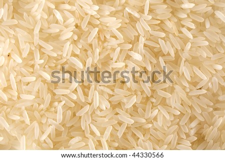 Natural texture, grains of rice close up