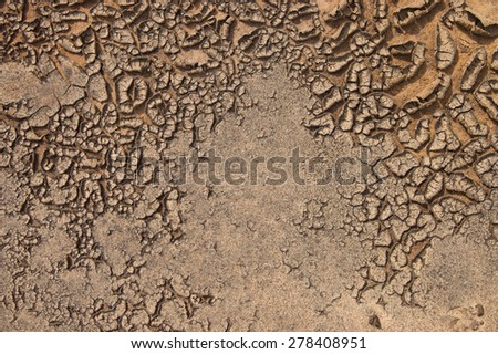 Natural texture of dried sandy ground