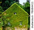 Natural thermal insulation of an older house. Green ivy is rambling at the facade. - stock photo