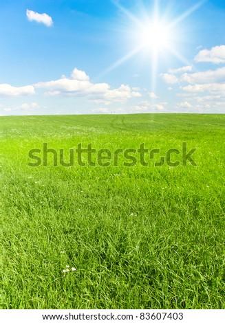 Natural Wallpaper Bright Sunshine - stock photo