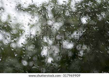 natural water drop on glass. blurred trees in the background - stock photo