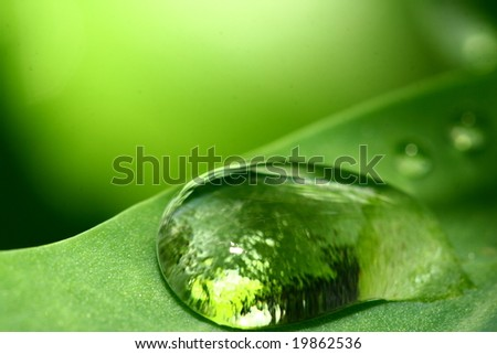 natural waterdrop - stock photo