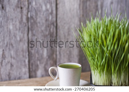Natural wheatgrass juice extracted with sprout on wooden background - stock photo