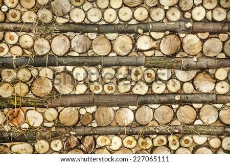 Natural wood log background pattern - stock photo
