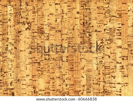 Natural wooden pith a texture a beige background - stock photo