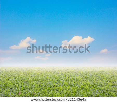 nature abstract background with grass and summer sky
