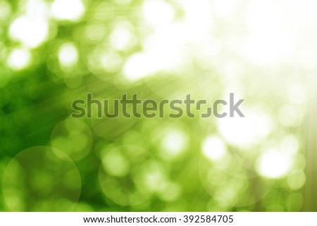 Nature abstract bokeh blurred background. give life Tree growth hot summer future outdoor earth backdrop green natural room heaven blur fun Mineral Good eyesight eco hac life hope sunny spare dream - stock photo