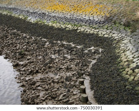 Sedimentation Stock Images Royalty Free Images Amp Vectors