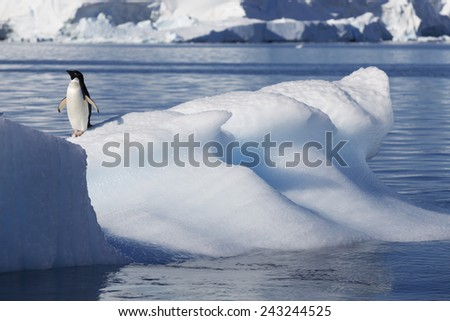 Nature and landscapes of Antarctic.Climatic and atmospheric changes. Thawing of ices and phenomenon of global warming.  - stock photo