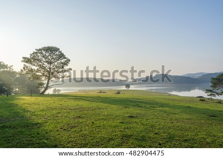 Nature at Suoi Vang lake, Dalat countryside, Vietnam, amazing wide grass in yellow morning, lake among pine forest, mountain far away, pine tree, wonderful scene for Da Lat, Viet Nam travel
