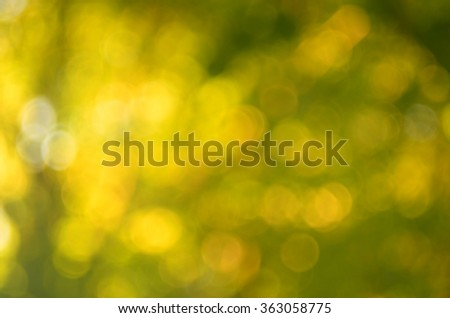 Nature autumn leaf with bokeh sun light abstract background.