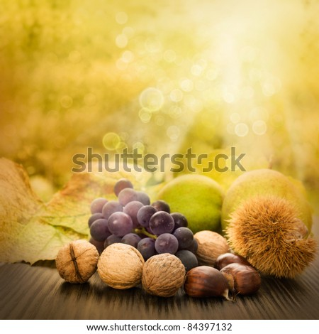 Nature background made of autumn fruit and beautiful sunlight in the back. Grapes, chestnut, vine leaf, walnuts, quince and apples.