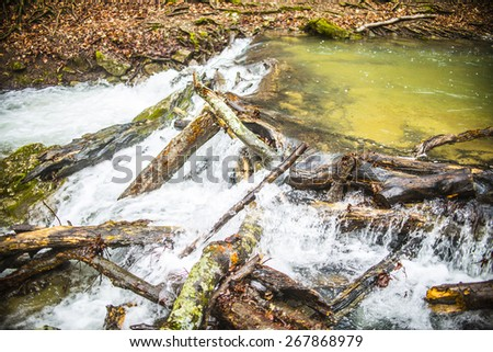 Nature Background of waterfall and wet log in autumn in a temperate rain forest Water stream flowing under a moss covered trunk in fall season  - stock photo
