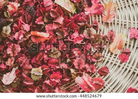 Nature background or wallpaper: Colorful leaves on the ground full frame shot. - stock photo