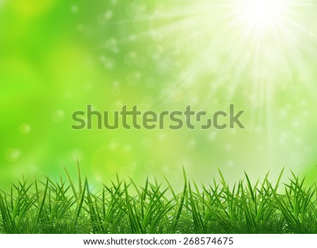 Nature background with green grass and sunlight - stock photo