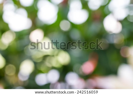 nature bokeh from out of focus in garden - stock photo