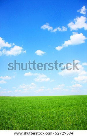 Nature collection - Green meadow template - stock photo