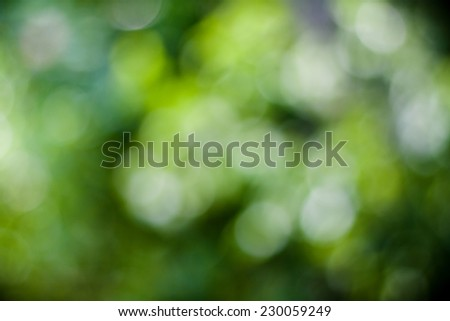 Nature Defocused Background - stock photo