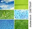 Nature eco backgrounds - stock photo