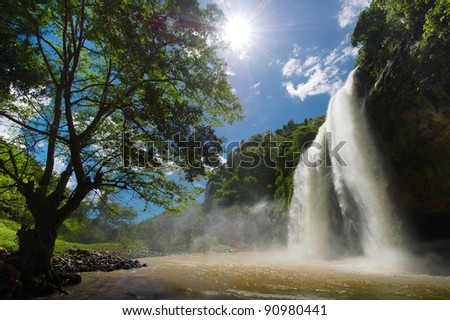 nature elegance - stock photo