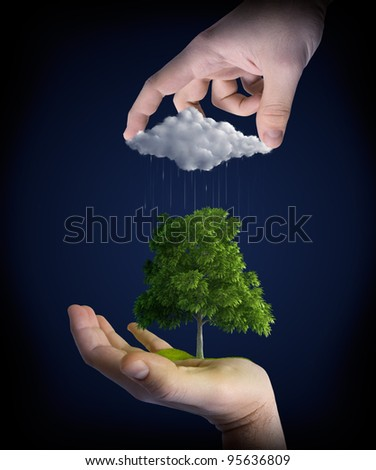 Nature elements in the hands of man - stock photo
