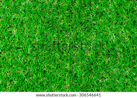 Nature Grass texture. - stock photo