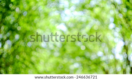 Nature green concept blurred background in garden - stock photo
