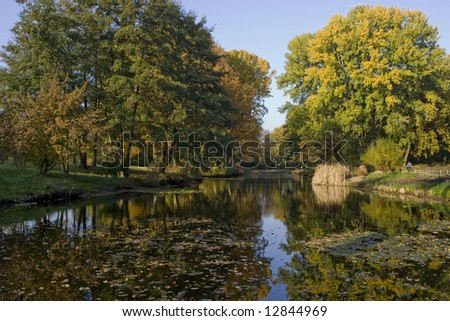 Nature in Fall - stock photo