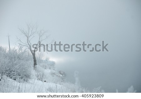 nature in winter, winter in the woods, the morning mist. - stock photo