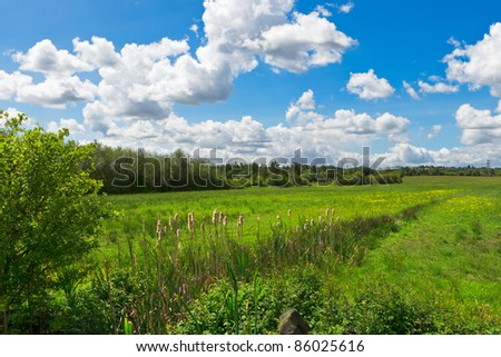 Nature landscape - stock photo