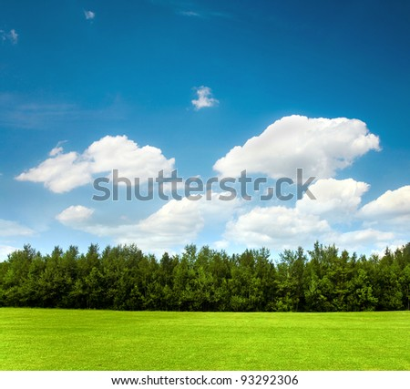 Nature, landscape -field, tree and blue sky